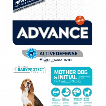 Advance Mother Dog and Initial